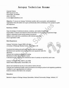 Security Resume Template - Download Awesome Network Security Engineer Sample Resume