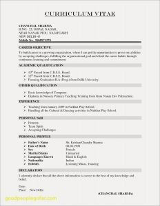 Server Resume - Cv Resume Example Doc Valid Resume Template Doc New Resume Doc 0d