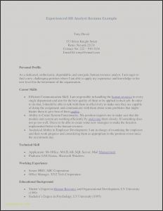 Server Resume - Server Resume Template – Resume Te Awesome Examples Resumes