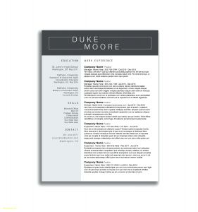 Singer Resume Template - Artist Resume Sample Makeup Templates 7 Beginner Resumes Free
