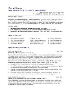 Singer Resume Template - 46 Inspirational Program Manager Resume Sample