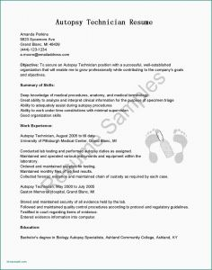 Smu Resume Template - Examples A Cover Letter for A Resume Cover Letter Resume Template