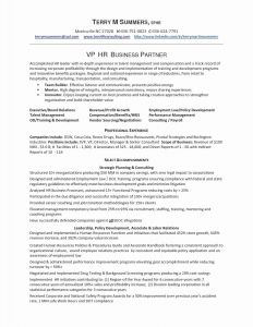 Social Media Marketing Resume Template - social Media Proposal Template Unique Sales and Marketing Resume New