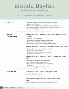 Spanish Resume Template - Download Best Example Resume Summary
