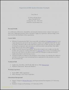Sql Resume - Free Curriculum Vitae – Resume Te Awesome Examples Resumes Ecologist