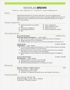 Stay at Home Mom Resume Template - 20 Elegant Stay at Home Mom Resume Examples