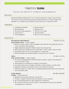 Swiss Resume Template - Proffessional Resume Template Inspirational Customer Service Resume