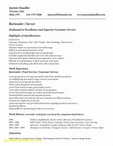 Swiss Resume Template - Bartender Resume Sample Lovely Outline Resume Lovely American Resume