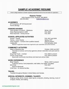 Talent Resume Template - 20 Easy Resume Examples Free Download