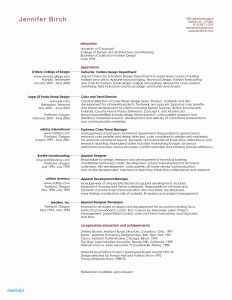 Technical Resume - American Resume Example New Resume Cv Executive Sample Luxury Resume