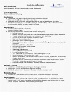 Technical Resume - Technical Resume New Rv Step Lift Lovely Technical Skills Resume