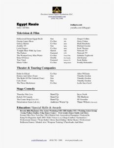 Technical theater Resume Template - 24 Actors In the Proposal Picture