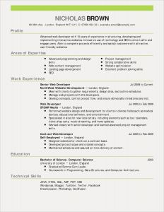 Text Resume Template - Sales Resumes Luxury Sales Resumes Examples Beautiful Resume
