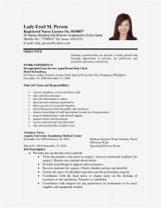 Theatre Resume Template Word - 28 New Resume Layout Word Sample