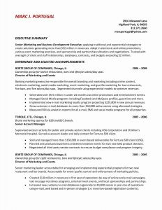 Uchicago Resume Template - Chicago Resume Template Word – Resume Professional Summary Examples