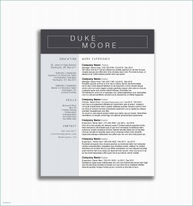 Ucsd Resume Template - Free Letterhead Templates Elegant Business Letter Example Doc New
