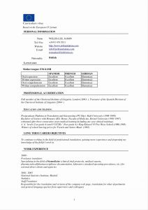 Uf Resume Template - German Cv Template Bild – Resume Template Roofing Invoice Example