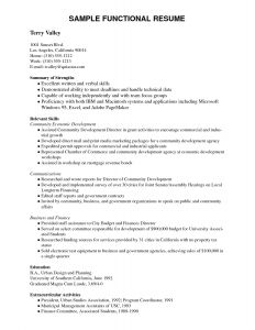 Usc Resume Template - 64 Concepts Resume Writing Template