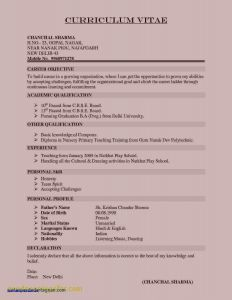 Used Car Career Resume - Used Car Career Resume Luxury Student Resume Summary Examples Nice