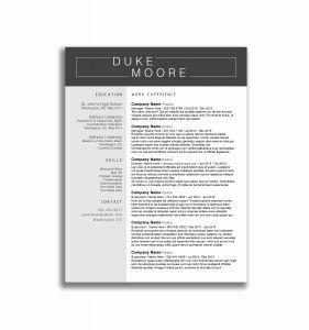 Ut Austin Resume Template - Resume Templates 2019 — Resume Templates and Cover Letters Learn