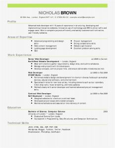 Utd Jsom Resume Template - 17 It Resume Template