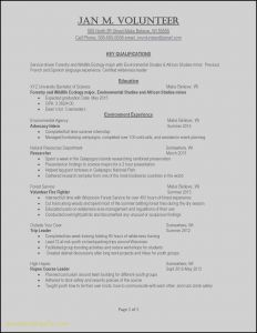 Volunteer Resume Template - Resume Examples for Warehouse Position Recent Example Job Resume