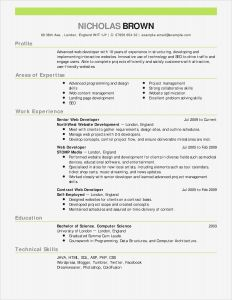 Web Resume Template Free - Letter Stencils for Painting Lovely Cfo Resume Template
