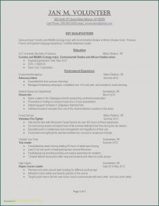 Wharton Mba Resume Template - University Essay Examples Example Job Resume Awesome Examples