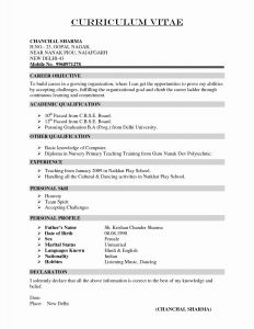 Writers Resume Template - Writing A Resume for Internship New Beautiful Examples Resumes