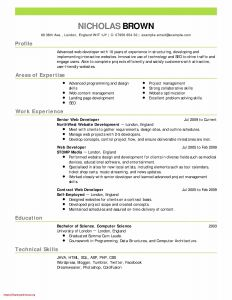 Yahoo Ceo Resume Template - Unique Yahoo Ceo Resume Resume Ideas