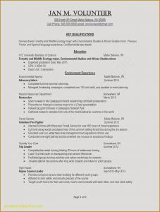 Youth Ministry Resume Template - Powerful Resume Examples Refrence Good Sample Resume Beautiful